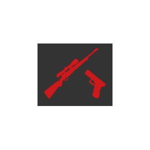"Option ""Pistolet/Carabine"""